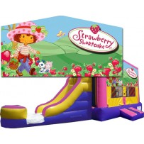 (C) Strawberry Shortcake Bounce Slide combo (Wet or Dry)